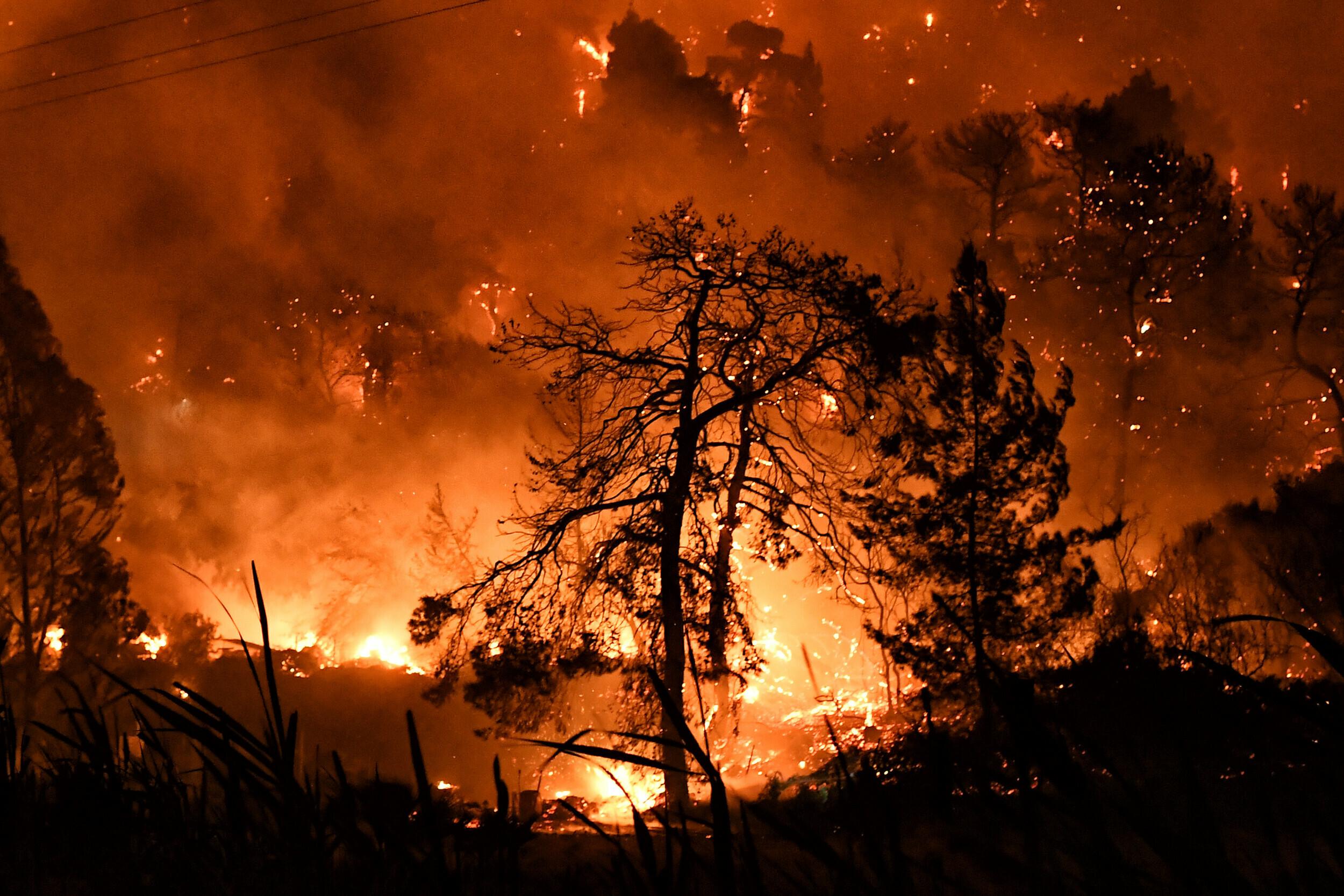 Φωτιά στην Κορινθία: Σε πλήρη εξέλιξη και με πολλές εστίες η πυρκαγιά -  Μέτωπο και προς τα Μέγαρα   LiFO