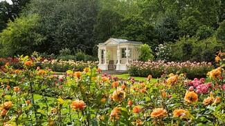 Πολίτες θα μπορούν να κάνουν πικ νικ στους κήπους του Μπάκιγχαμ το καλοκαίρι- Τεράστια ζήτηση για τα εισιτήρια