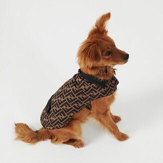 Ο οίκος Fendi παρουσίασε κολεξιόν για σκυλιά