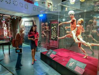 Η υπεύθυνη επικοινωνίας Βίκυ Κοκκίνη επισκέπτεται την έκθεση Body Worlds και μας περιγράφει!