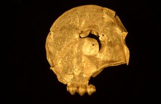 Δανία: Ανακάλυψε τυχαία θησαυρό με χρυσά νομίσματα και τιμαλφή από την Εποχή του Σιδήρου